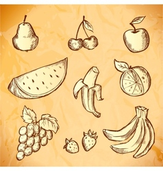 Vintage sketched fruits icon set vector