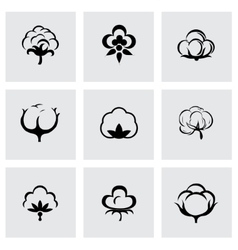 Cotton icon set vector