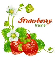 Strawberry frame vector