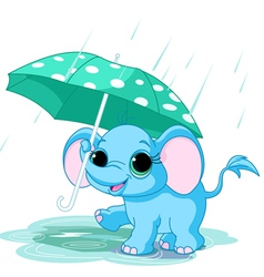 Cute baby elephant under umbrella vector