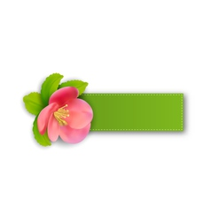 Special spring offer sticker with flower isolated vector