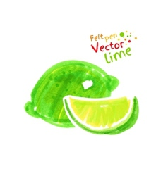 Child drawing of lime vector