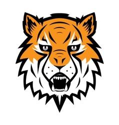 Tiger logo team symbol sport mascot icon isolated vector