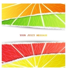 Four citrus background vector