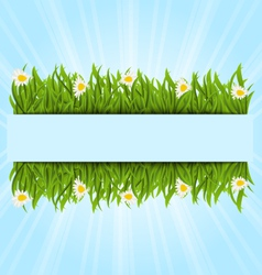 Spring postcard with grass field and flowers vector