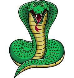 King cobra vector