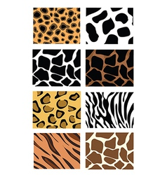 Animal print sets vector