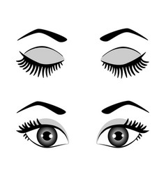 Silhouette of eyes and eyebrow open and closed vector