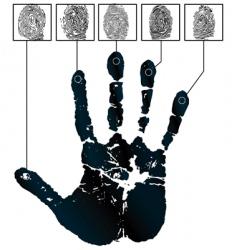 Hand-prints vector