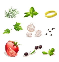 Set of vegetables on a white background dill vector