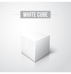 White cube on white background with reflection vector