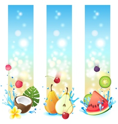 3 fruits in splashes banners vector