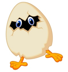 Little chicken cartoon in egg vector