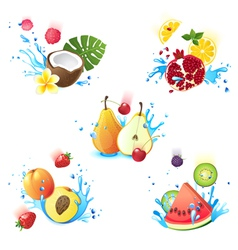 Fruits in splashes vector