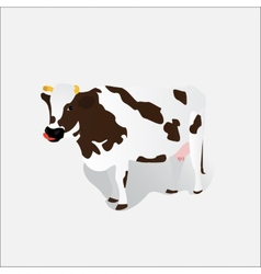 Spotted cow isolated vector