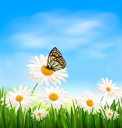 Nature background with green grass and butterfly vector