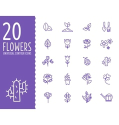 Flower and gardening tools icons with white vector