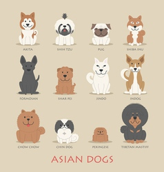 Set of asian dogs vector