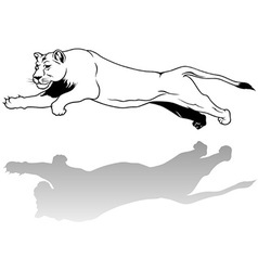Jumping lioness vector