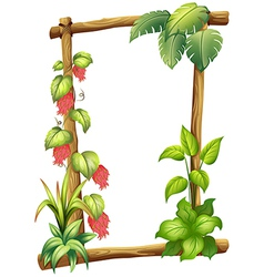 A frame made of wood with vine plants vector