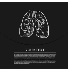 Lungs doodle drawing medical background vector