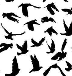 Doves and pigeons seamless pattern for peace vector