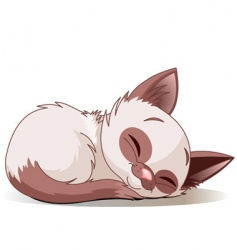 Sleeping kitten vector
