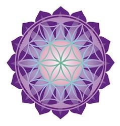 Floral esoteric design vector