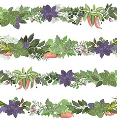 Seamless border of collection herbs and spices vector