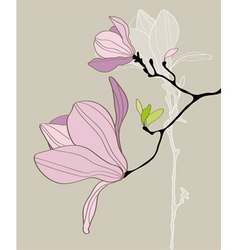 Card with stylized magnolia vector