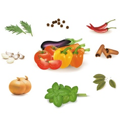 Group of vegetables vector