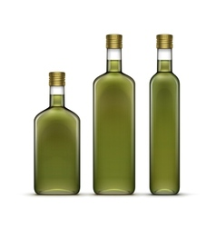 Set of olive oil glass bottles isolated vector