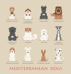 Set of mediterranean dogs vector