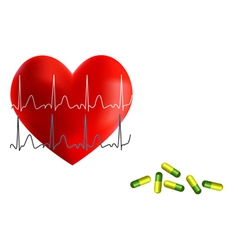 Heart ekg and medicine vector