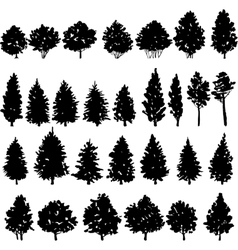 Set of trees silhouettes vector