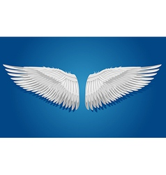 White wings on blue background vector