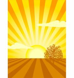 Sunset over cultivated field vector