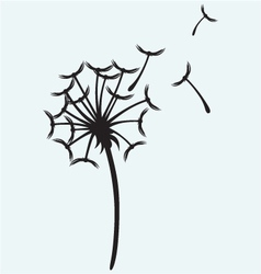 Dandelion on a wind vector