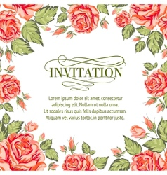 Frame of red roses on a white background vector