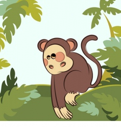 Monkey in the jungle vector