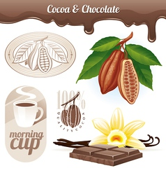 Set - cocoa beans and chocolate vector