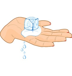 Ice cube in a hand vector