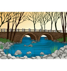 Bridge in nature vector