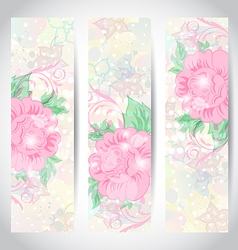 Set romantic beautiful cards with flower vector