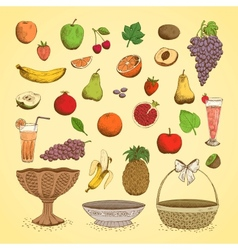 Set of juicy fresh fruits vector