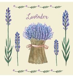 Lavender background watercolor vector