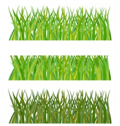 Set of grass illustration vector