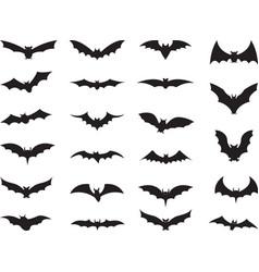 Bats collection vector
