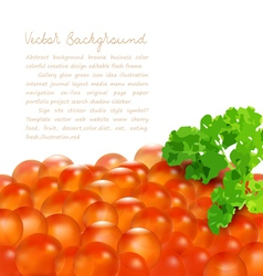 Red caviar with parsley isolated vector