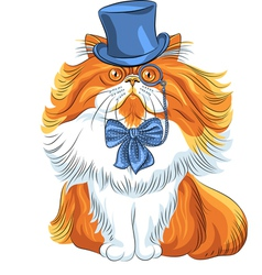 Hipster cute red fluffy persian cat in a blue hat vector